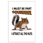 SQUIRREL Posters