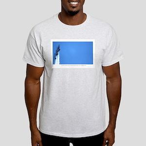 Blue Angels SF Ash Grey T-Shirt