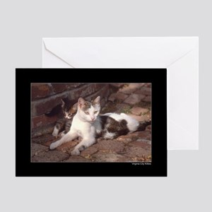 Virginia City Kitties Greeting Card