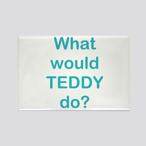 What would TEDDY do? Rectangle Magnet