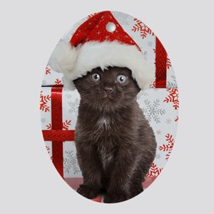 Kitten & Gifts Oval Ornament
