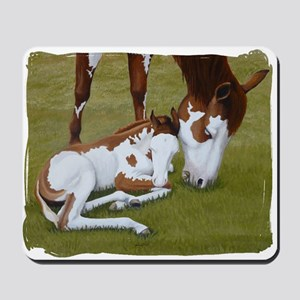 Paint Mare & Foal Mousepad