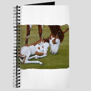 Paint Mare & Foal Journal