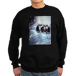Sweatshirt (dark) FUNFASHIONETC