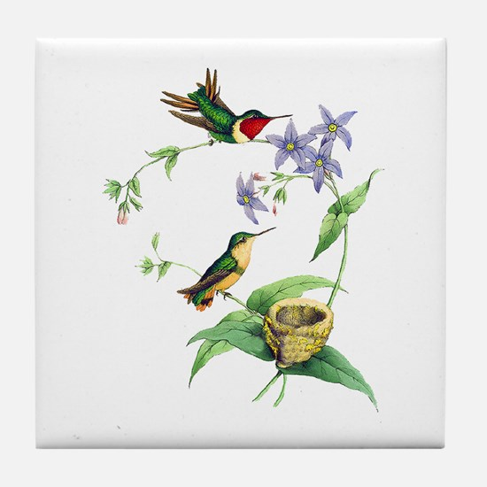 Hummingbirds Tile Coaster