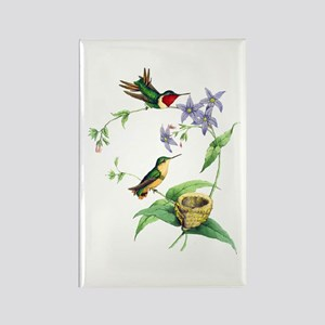 Hummingbirds Rectangle Magnet