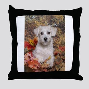 Schnoodle Time Throw Pillow