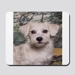 Schnoodle Time Mousepad