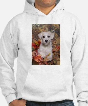 Schnoodle Time Hoodie