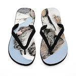 Saint Bernard Flip Flops