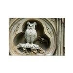 Stone Owl Rectangle Magnet
