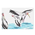 Cranes Postcards (Package of 8)