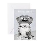 Tibetan Terrier Greeting Cards (Pk of 10)