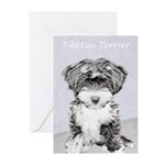 Tibetan Terrier Greeting Cards (Pk of 20)