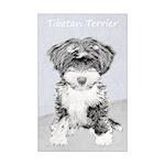 Tibetan Terrier Mini Poster Print