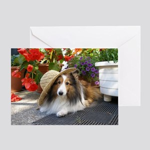 Sheltie in a tilted hat Greeting Card