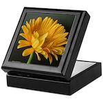 Yellow Gerber Daisy Keepsake Box