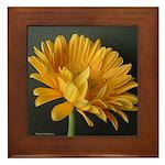 Yellow Gerber Daisy Framed Tile