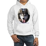 Falco Hooded Sweatshirt