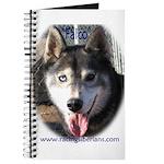 Falco Journal