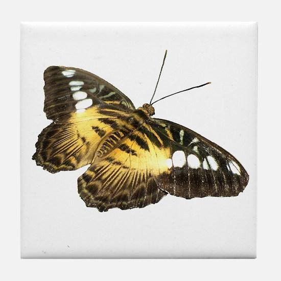 Helaine's Butterfly Tile Coaster
