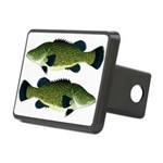 Murray Cod Hitch Cover