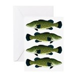 Murray Cod Greeting Cards