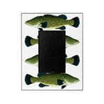 Murray Cod Picture Frame