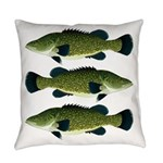 Murray Cod Everyday Pillow