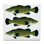Murray Cod Tile Coaster