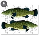 Murray Cod Puzzle
