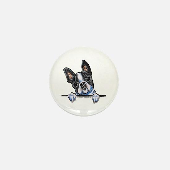 Curious Boston Mini Button