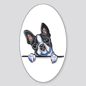 Curious Boston Sticker (Oval)