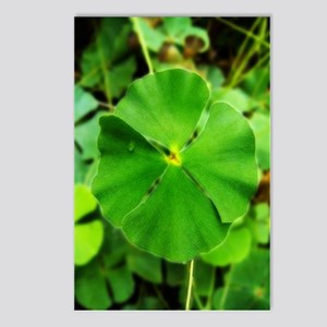 St.Patrick's Postcards (Package of 8)