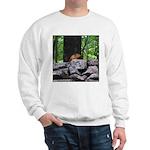 Cute Chipmunk Sweatshirt