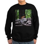 Cute Chipmunk Sweatshirt (dark)