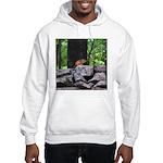 Cute Chipmunk Hooded Sweatshirt
