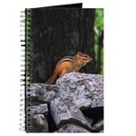 Cute Chipmunk Journal