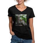 Chipmunk With Nut Women's V-Neck Dark T-Shirt