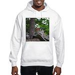 Chipmunk With Nut Hooded Sweatshirt
