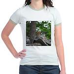 Chipmunk With Nut Jr. Ringer T-Shirt