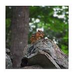 Chipmunk With Nut Tile Coaster