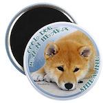 "Cool & Warm Shiba Inu 2.25"" Magnet (100 p"