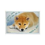 Cool & Warm Shiba Inu Rectangle Magnet (100 pa