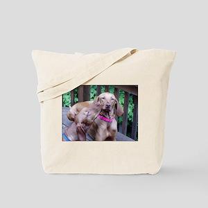 lvwcrstuff4 Tote Bag