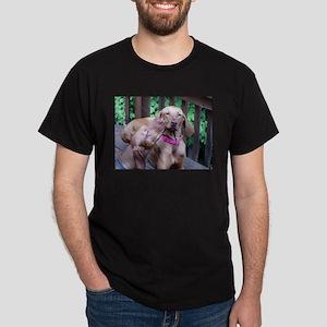 lvwcrstuff4 Dark T-Shirt
