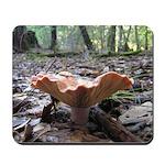 Orange Forest Mushroom Mousepad