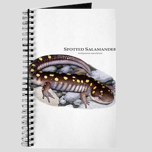 Spotted Salamander Journal
