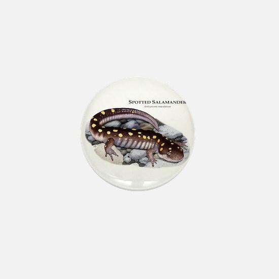 Spotted Salamander Mini Button