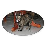 Tortoishell Cat 2 Oval Sticker (10 pk)